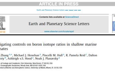 Boron Isotopes in Shallow Marine Carbonates, Nov 2016